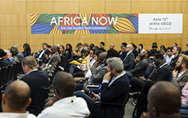 africa now for pp website.png