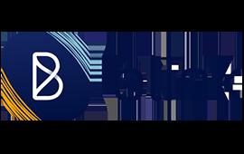 blink logo website.png
