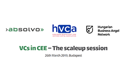 VCs in CEE 2019
