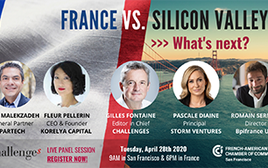 France vs Silicon Valley Image
